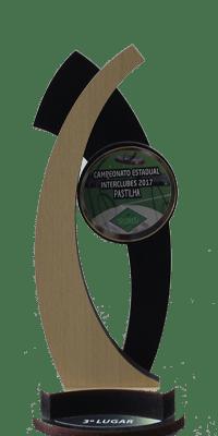 CAMPEONATO ESTADUAL INTERCLUBES- 3 LUGAR- 2017