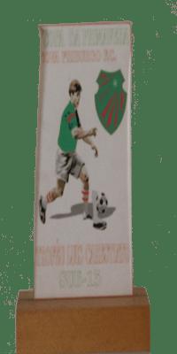 COPA DA PRIMAVERA N.F.F.C SUB 15 TROFEU LUIZ CARESTIATO