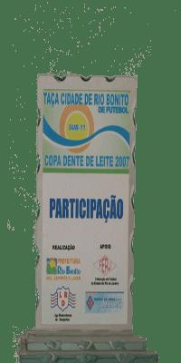 COPA DENTE DE LEITE 2007