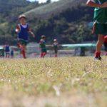 Definidos os confrontos pelas semifinais do Campeonato Interno
